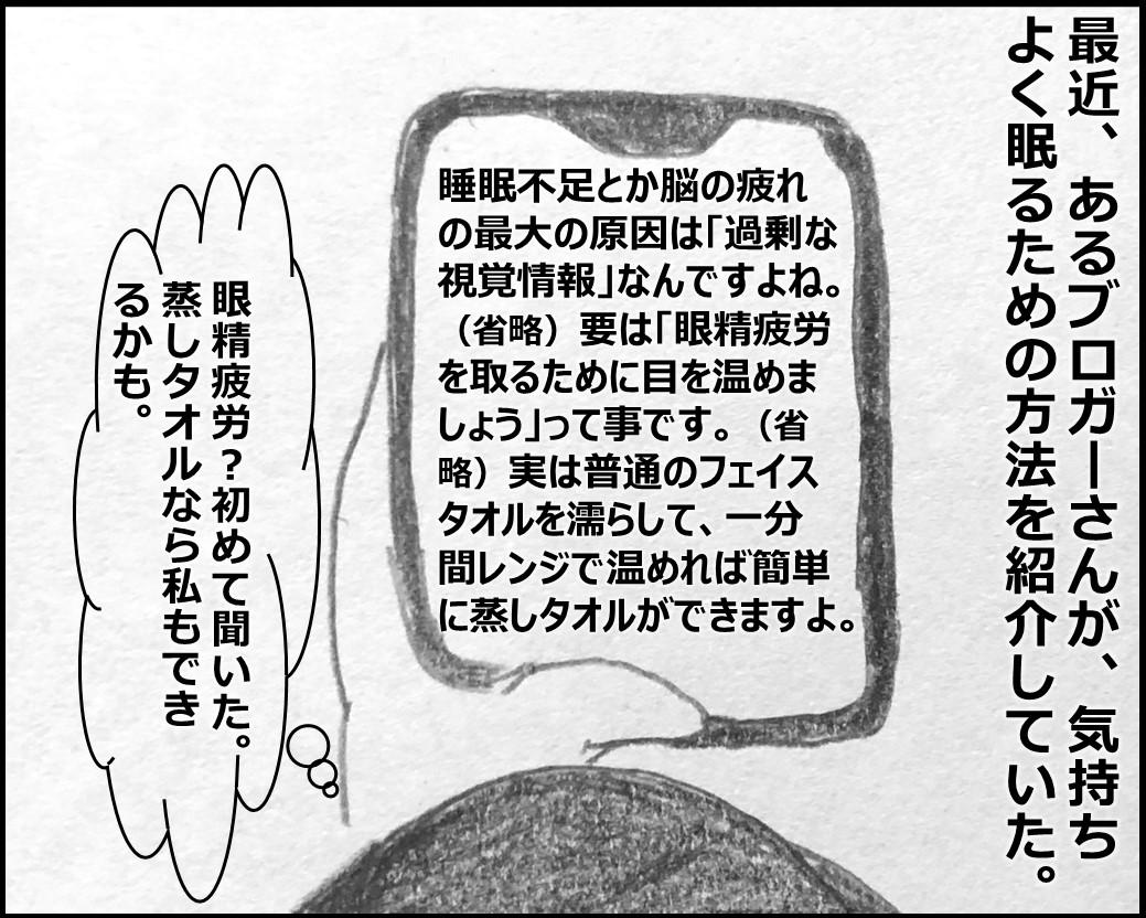 f:id:Megumi_Shida:20200130082001j:plain