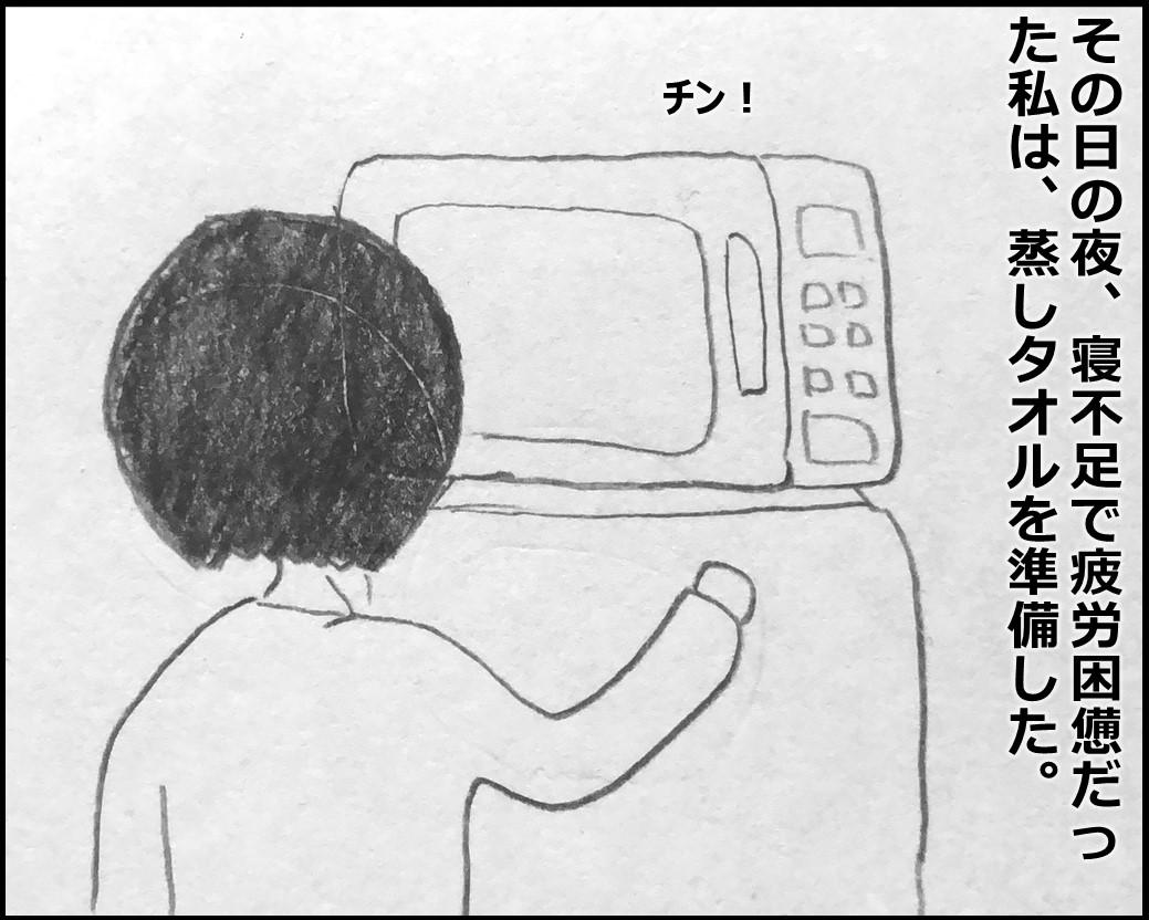 f:id:Megumi_Shida:20200130082007j:plain