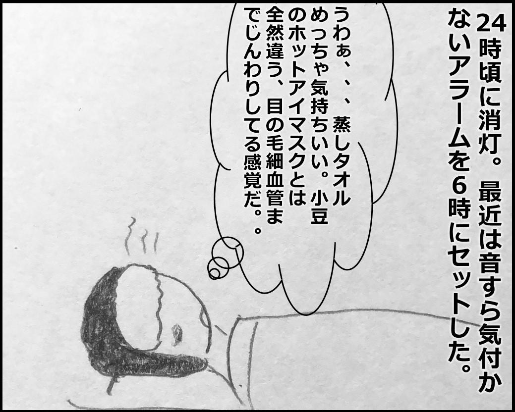 f:id:Megumi_Shida:20200130082015j:plain