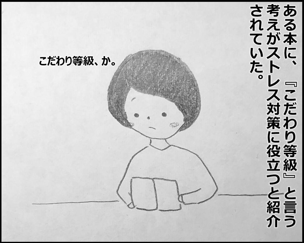 f:id:Megumi_Shida:20200229064815j:plain