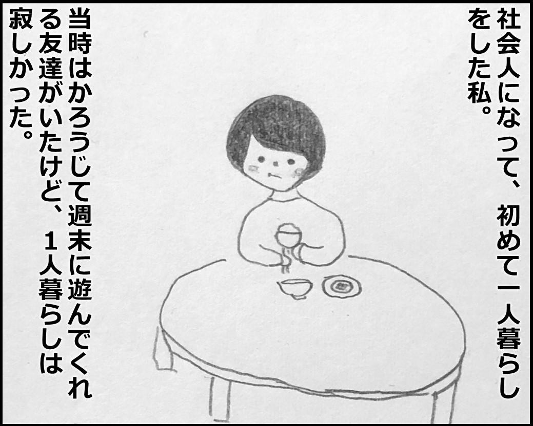 f:id:Megumi_Shida:20200314084821j:plain