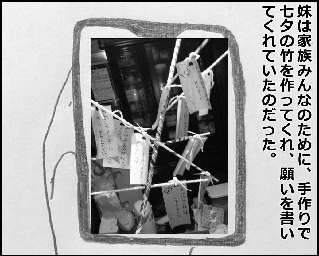 f:id:Megumi_Shida:20200314084851j:plain