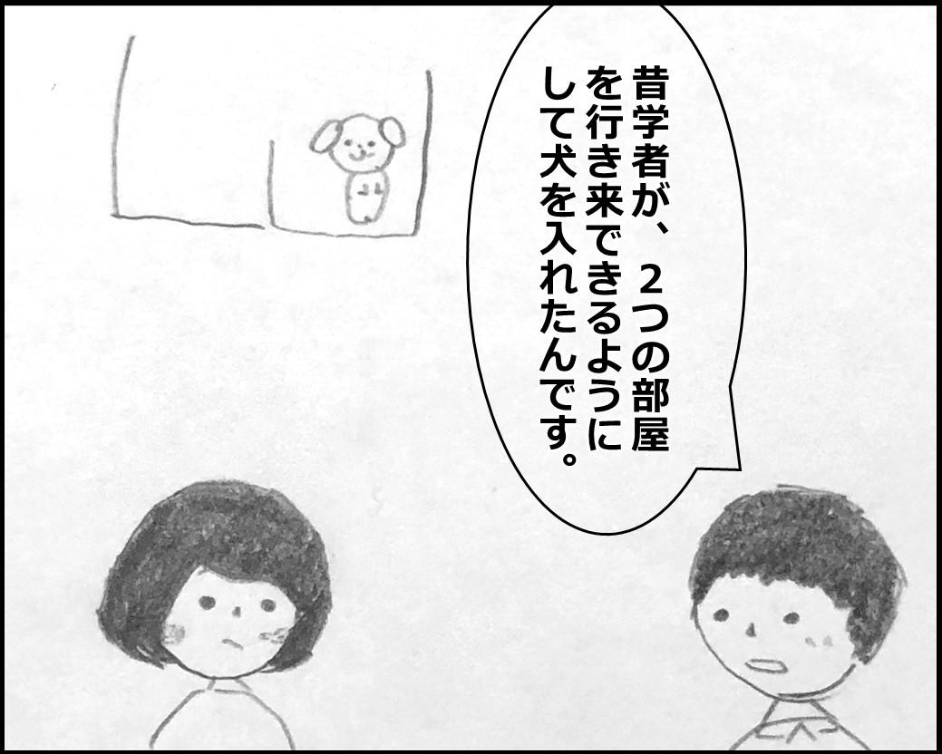 f:id:Megumi_Shida:20200330123844j:plain