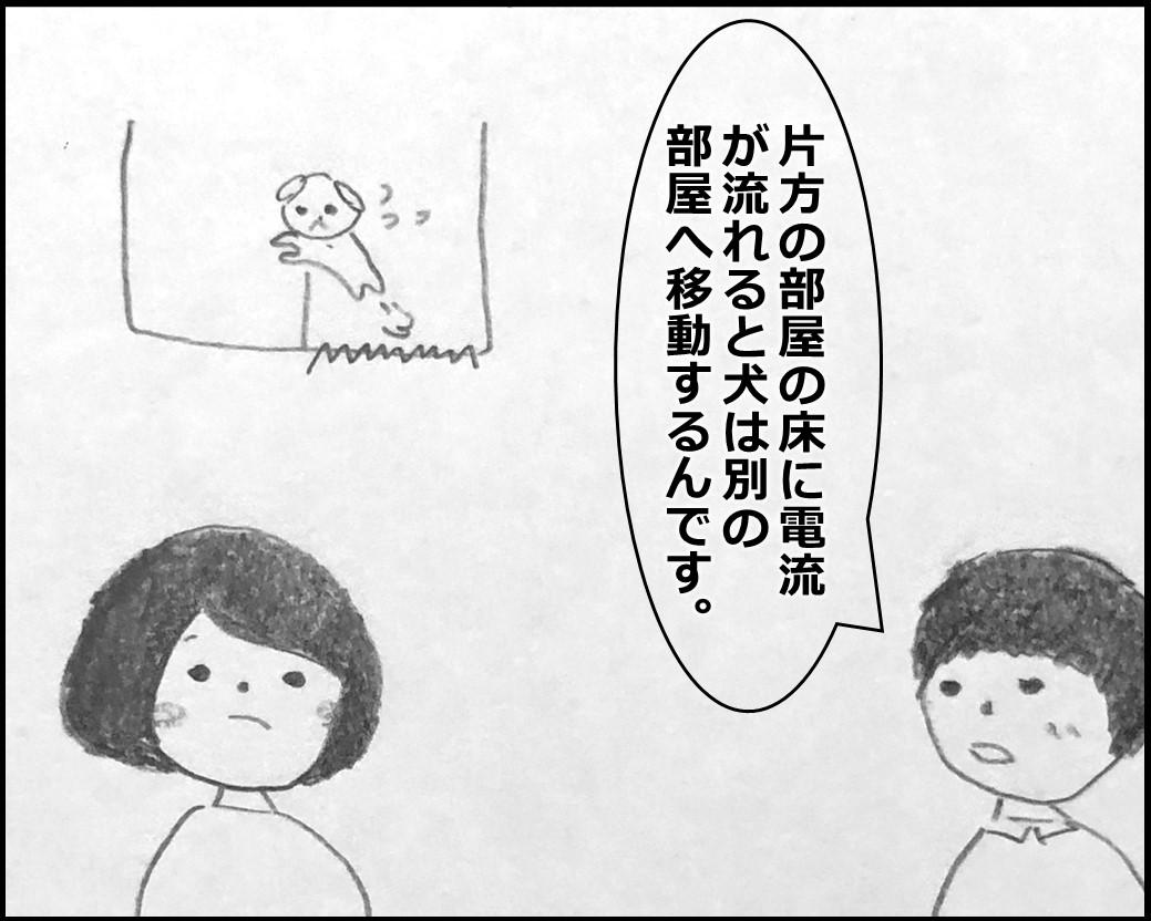 f:id:Megumi_Shida:20200330123857j:plain