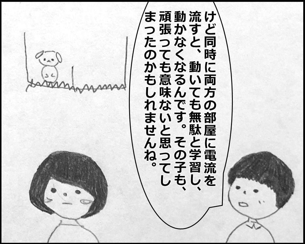 f:id:Megumi_Shida:20200330123902j:plain