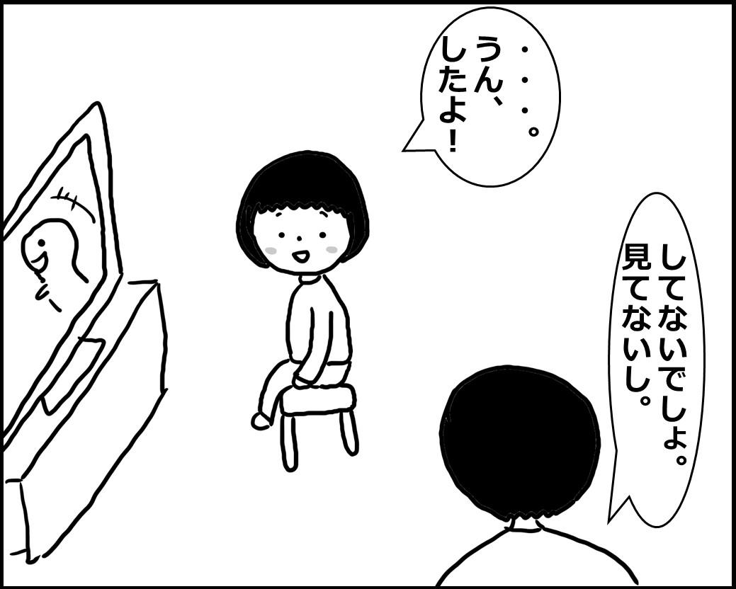 f:id:Megumi_Shida:20200429111228j:plain
