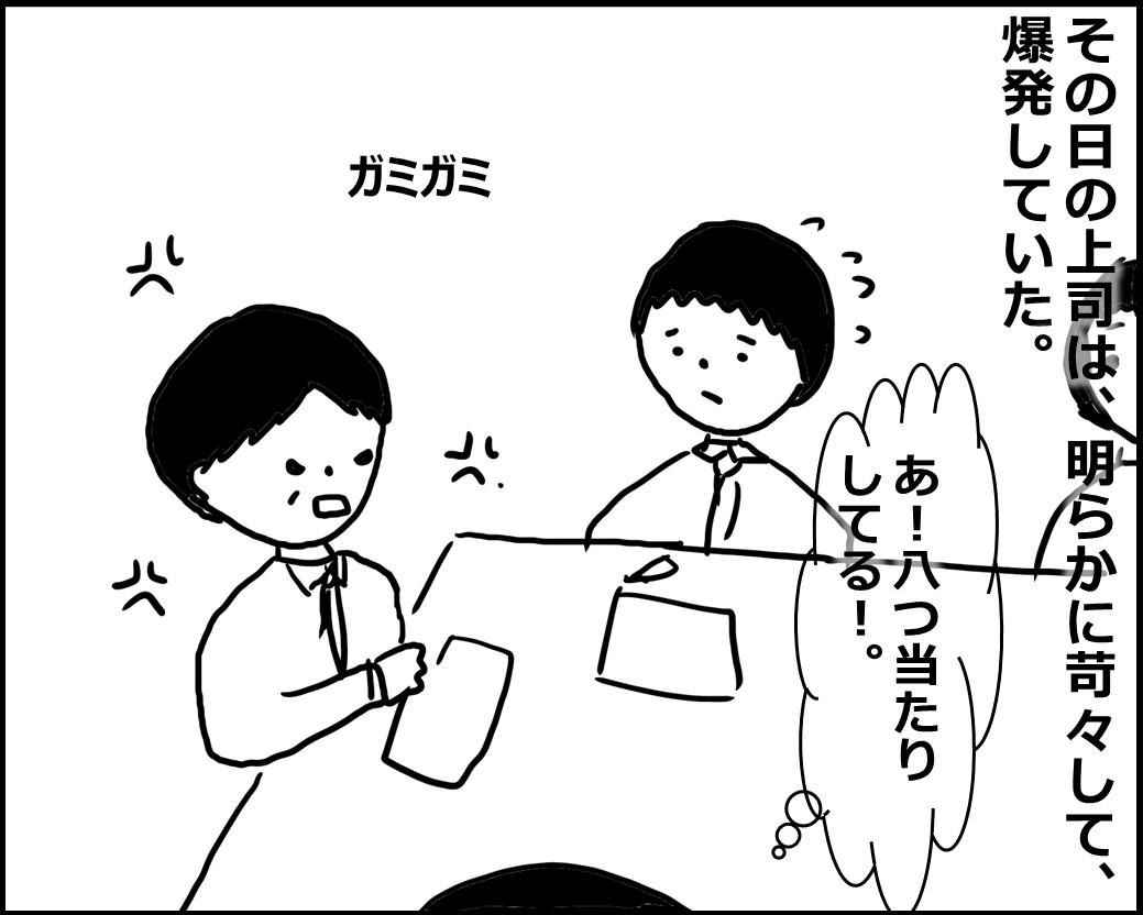 f:id:Megumi_Shida:20200509112836j:plain