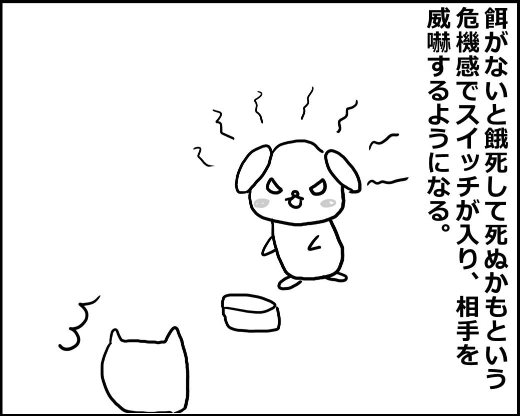 f:id:Megumi_Shida:20200511044946j:plain