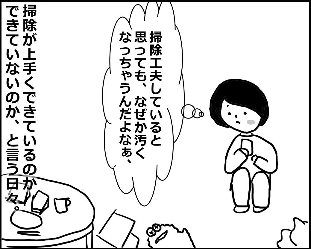 f:id:Megumi_Shida:20200517150614j:plain
