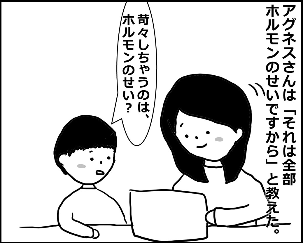 f:id:Megumi_Shida:20200529092604j:plain