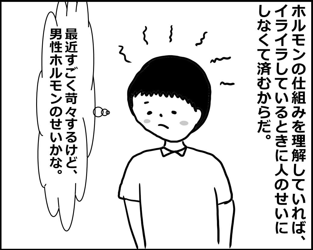 f:id:Megumi_Shida:20200529092613j:plain