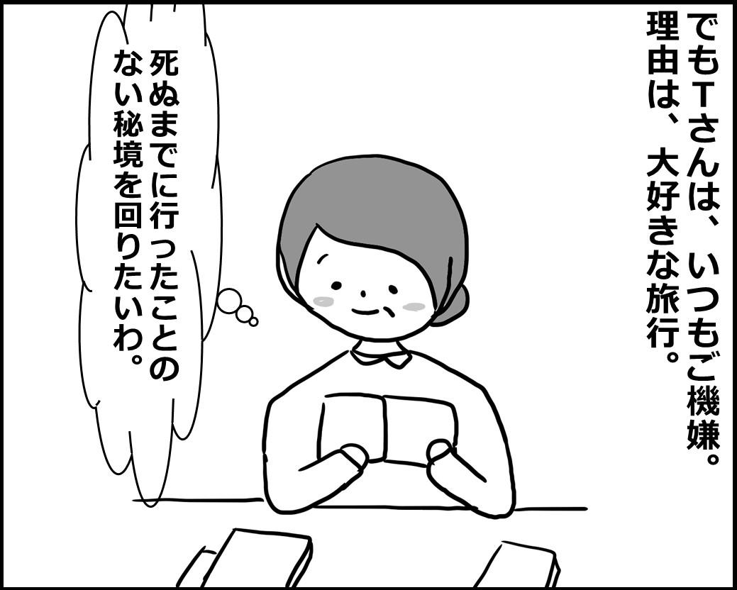 f:id:Megumi_Shida:20200601111905j:plain