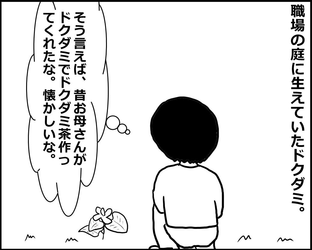 f:id:Megumi_Shida:20200612085655j:plain