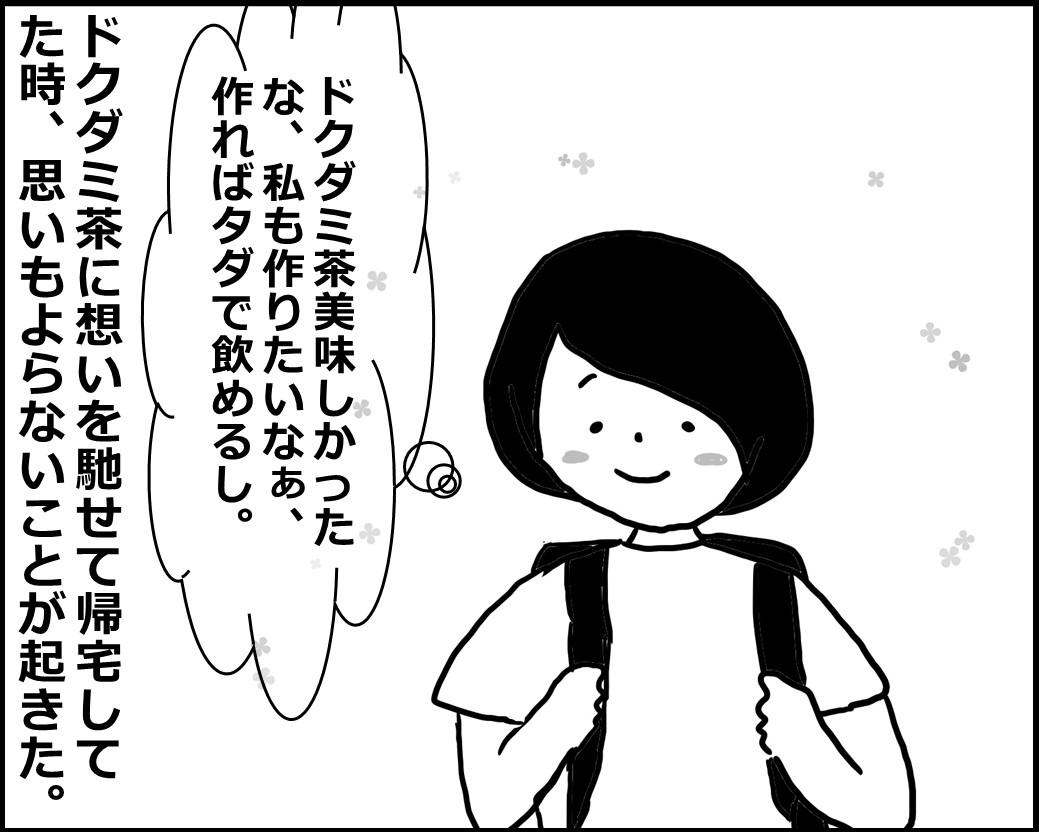 f:id:Megumi_Shida:20200612085659j:plain
