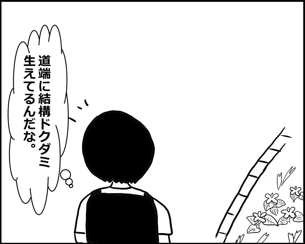 f:id:Megumi_Shida:20200612085704j:plain