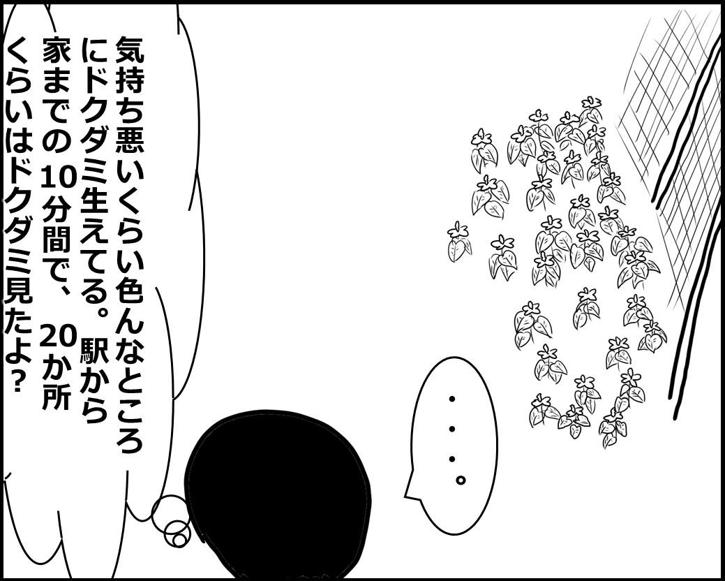 f:id:Megumi_Shida:20200612085714j:plain