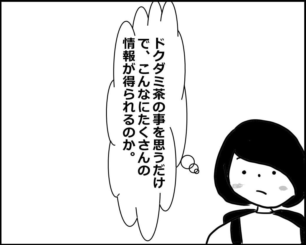 f:id:Megumi_Shida:20200612085718j:plain