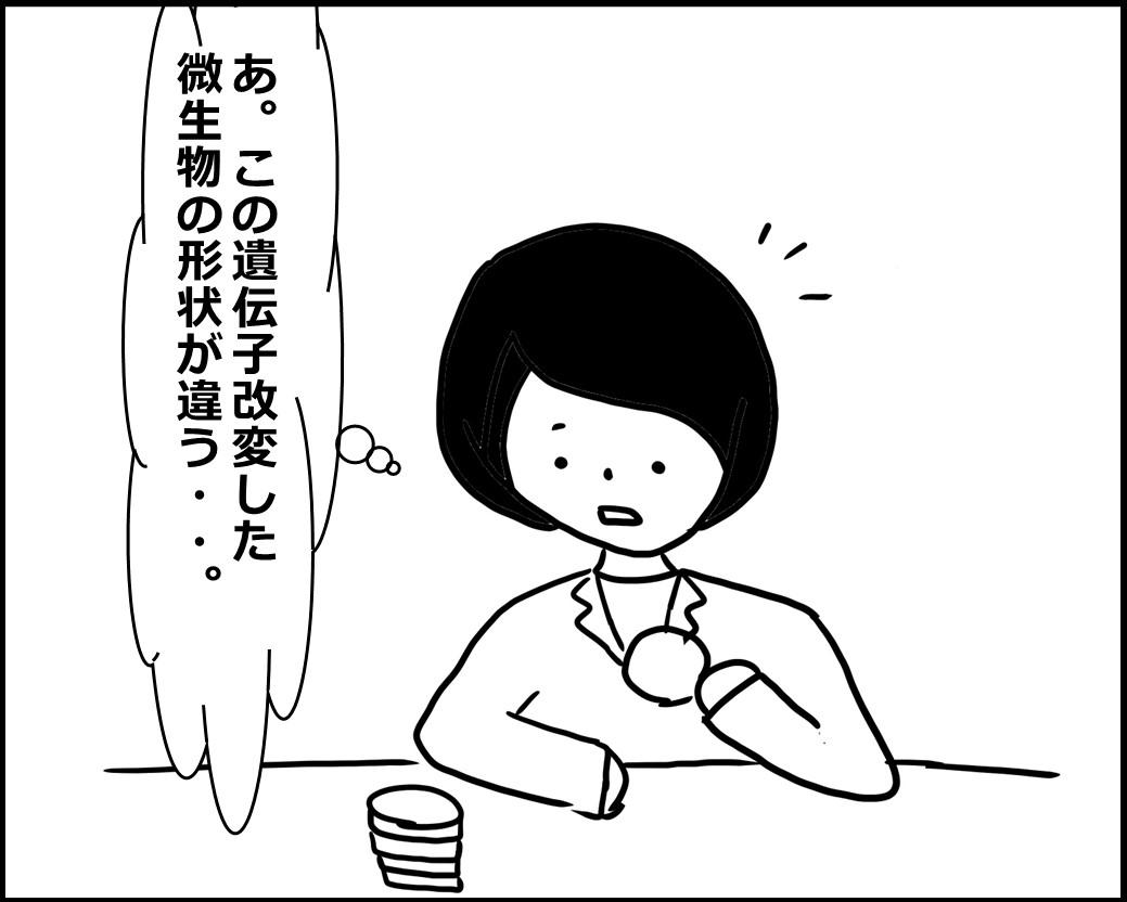 f:id:Megumi_Shida:20200619000804j:plain