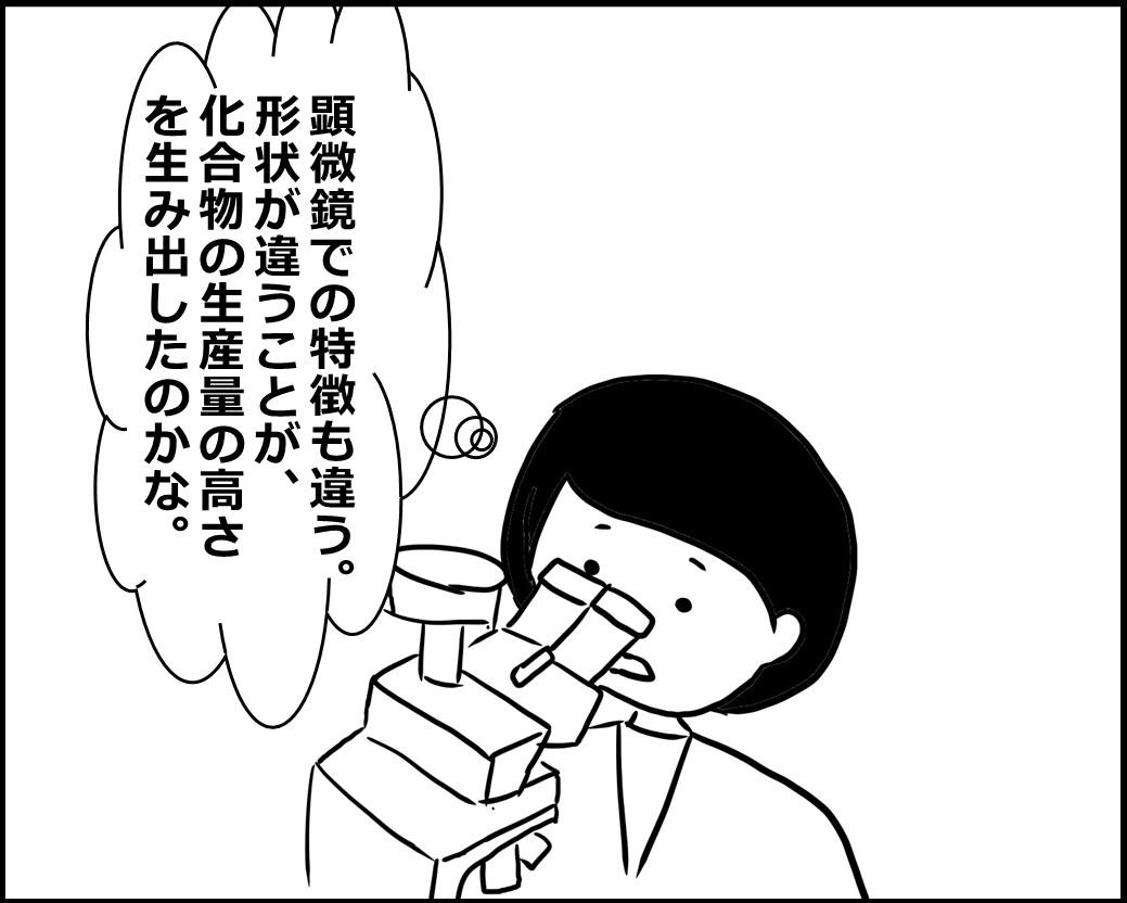 f:id:Megumi_Shida:20200619000815j:plain