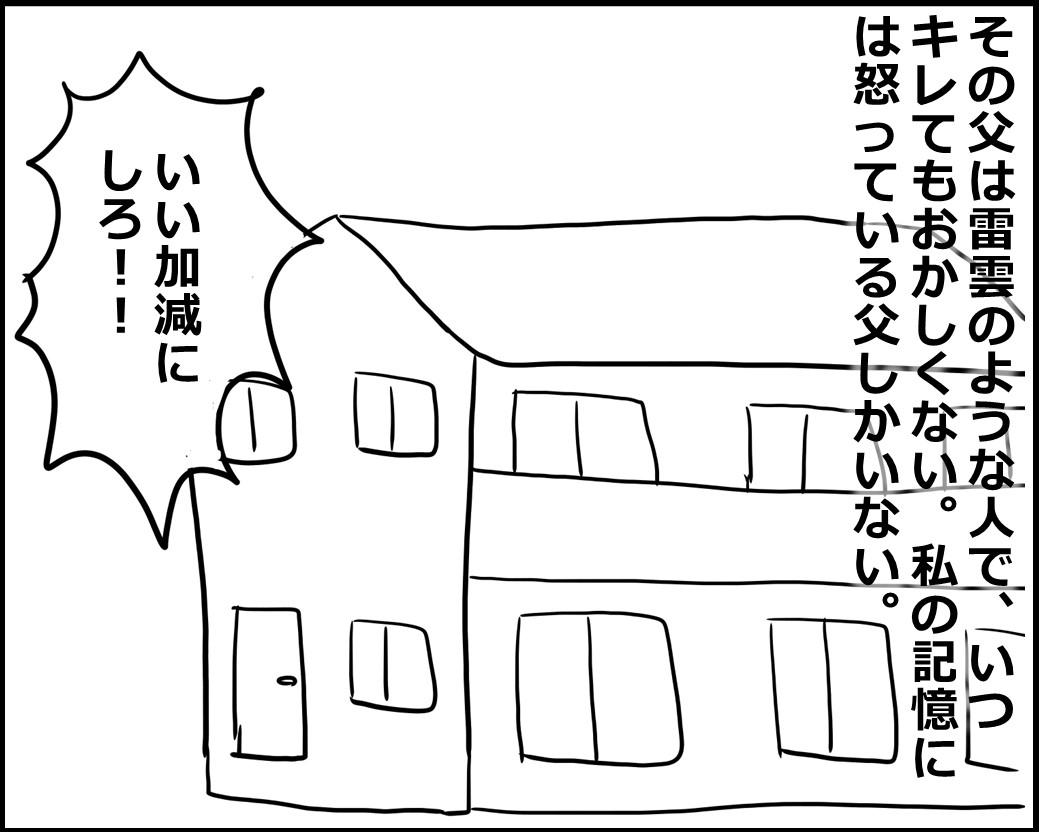 f:id:Megumi_Shida:20200703112002j:plain
