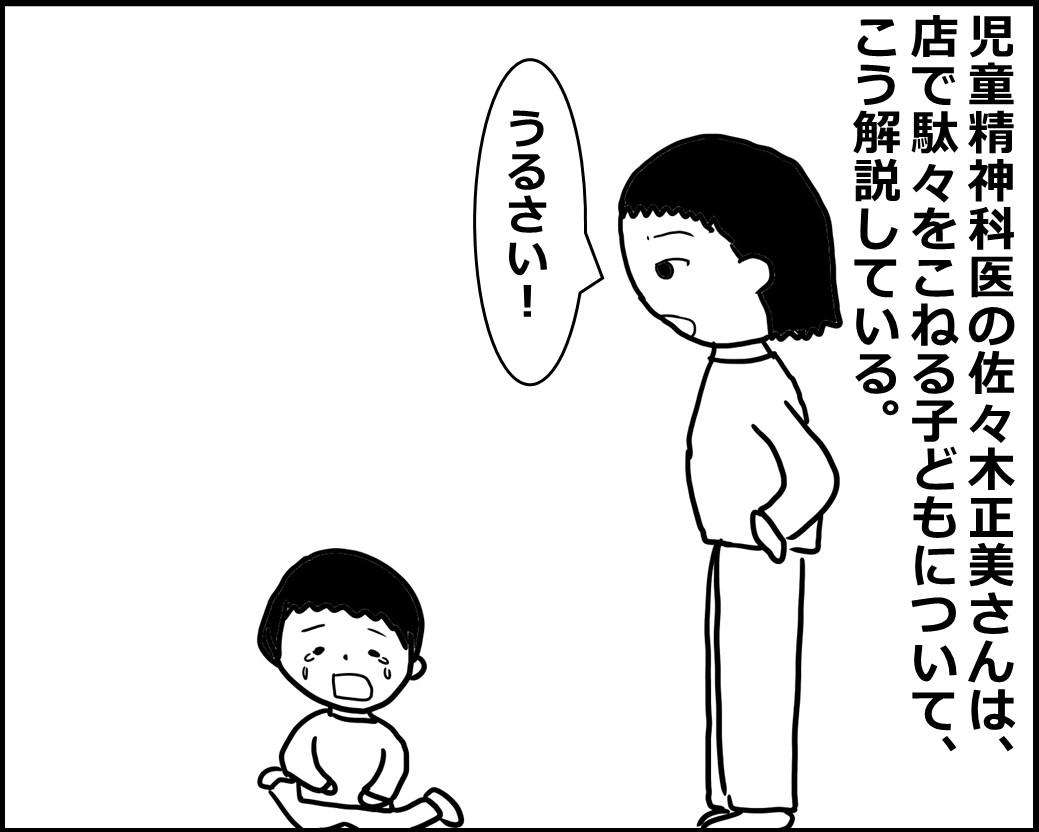 f:id:Megumi_Shida:20200808095750j:plain