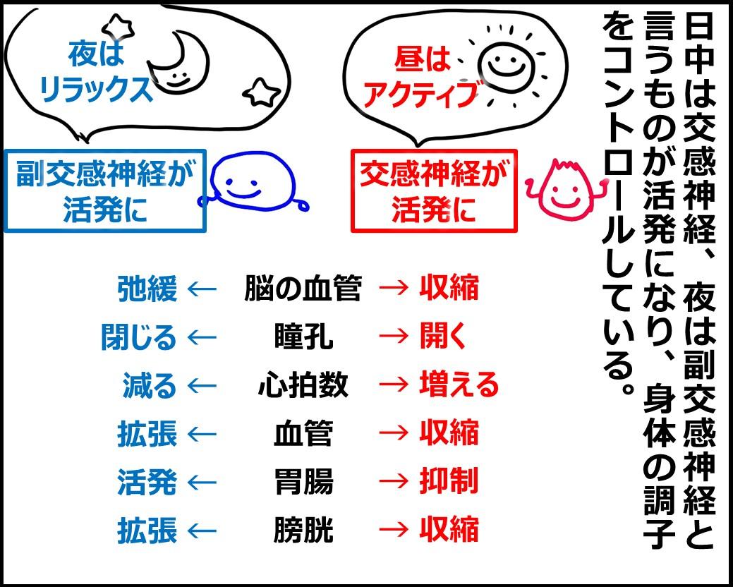 f:id:Megumi_Shida:20200821153910j:plain