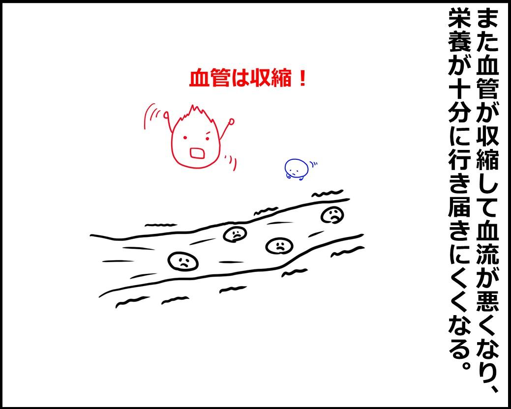 f:id:Megumi_Shida:20200822083240j:plain