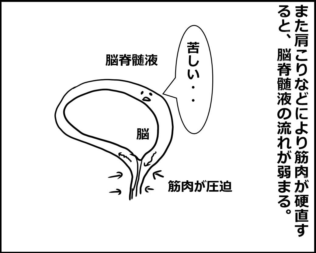 f:id:Megumi_Shida:20200824074325j:plain