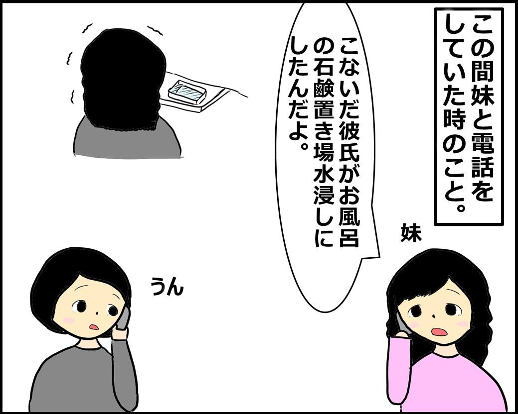 f:id:Megumi_Shida:20201010104829j:plain