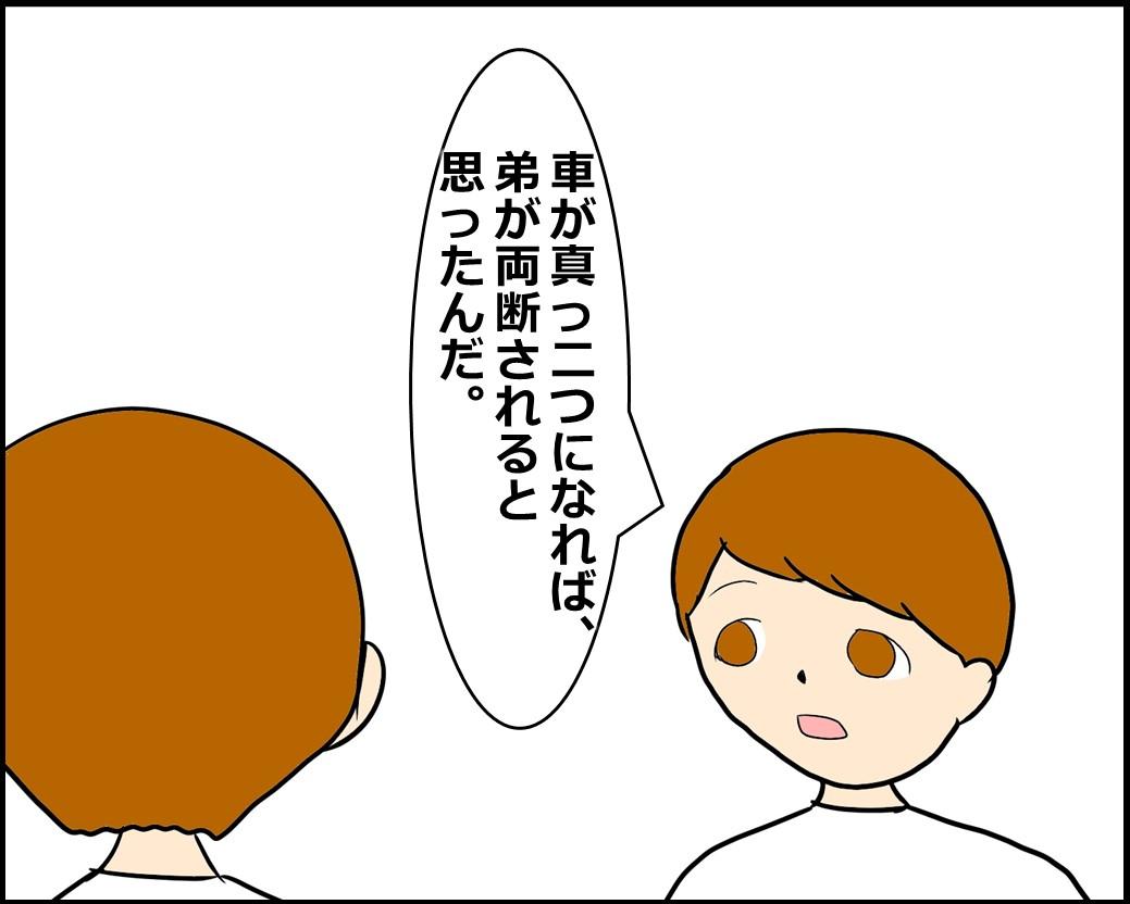 f:id:Megumi_Shida:20201127111821j:plain