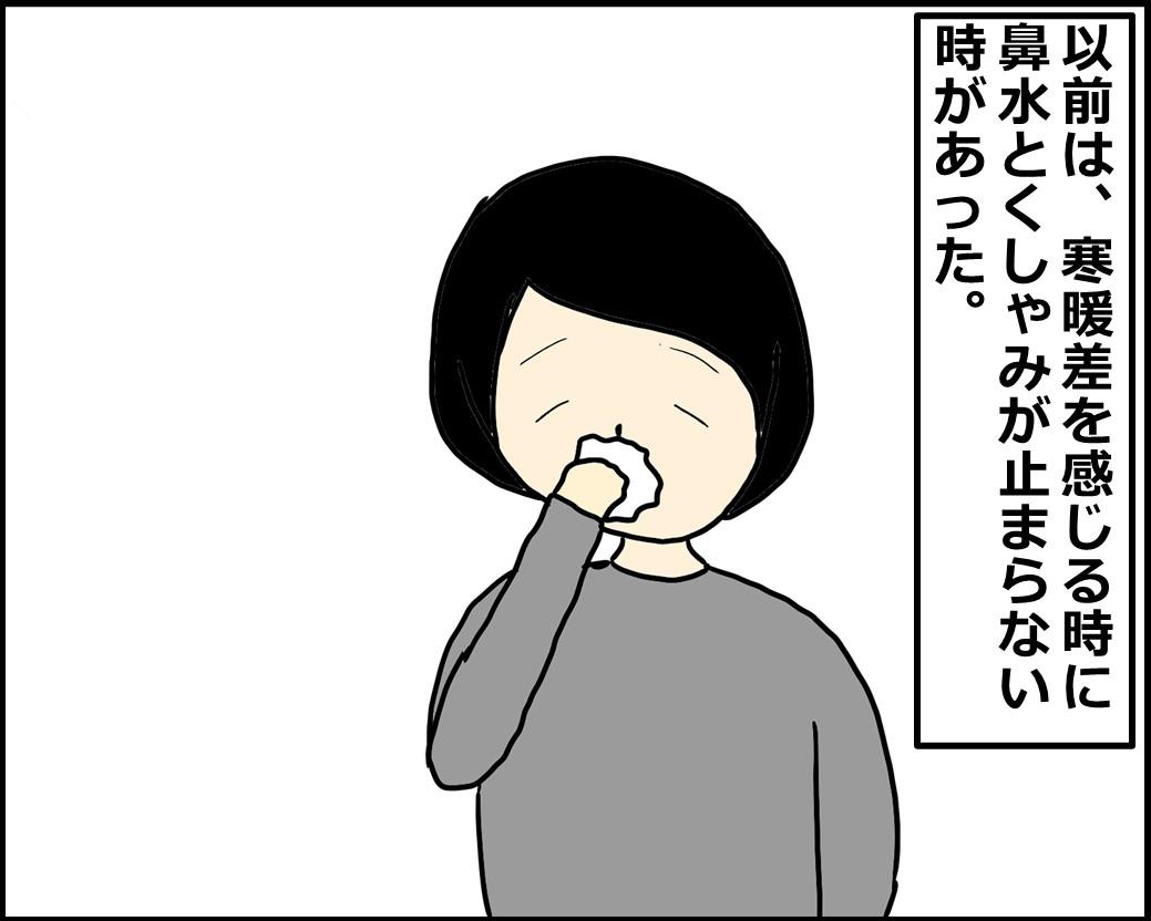f:id:Megumi_Shida:20201222105153j:plain