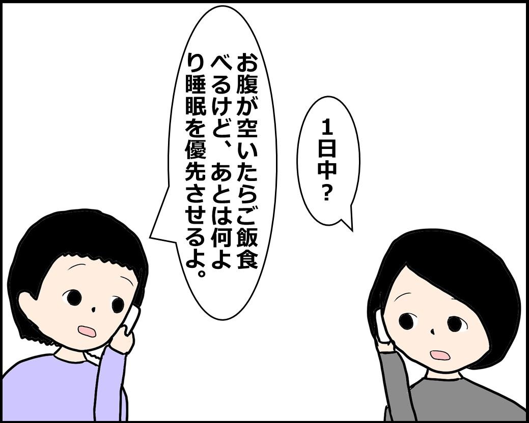 f:id:Megumi_Shida:20201222105215j:plain