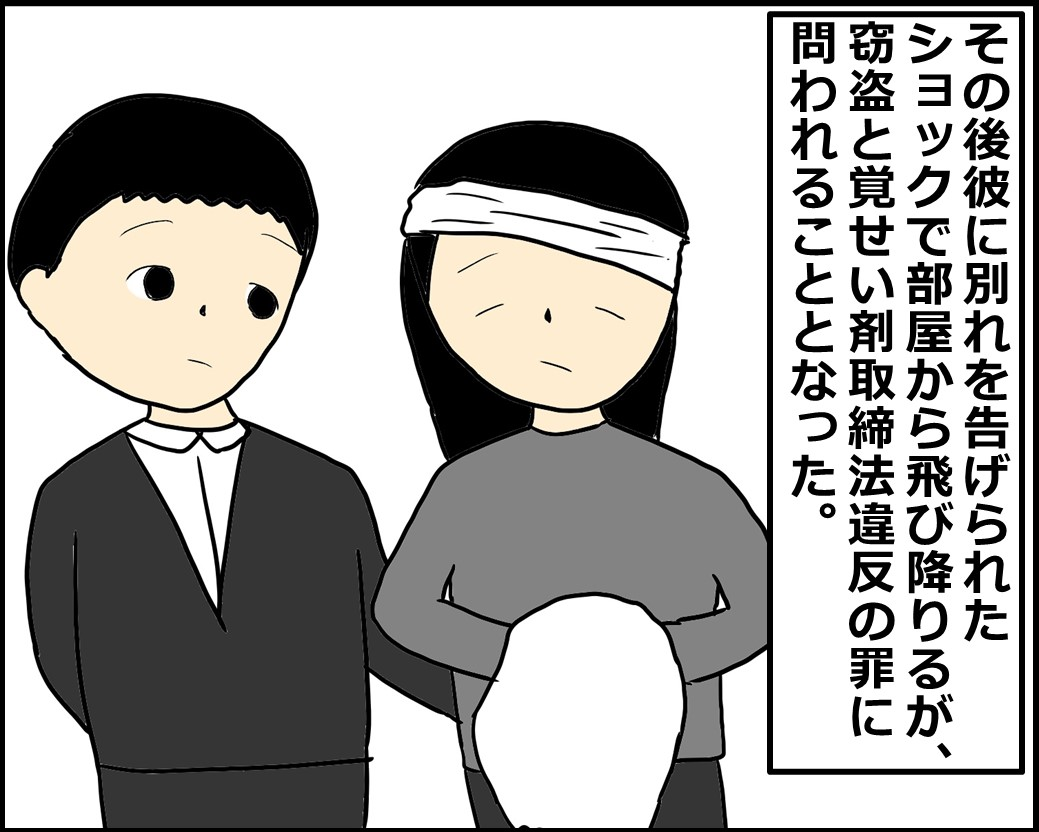 f:id:Megumi_Shida:20210118095858j:plain