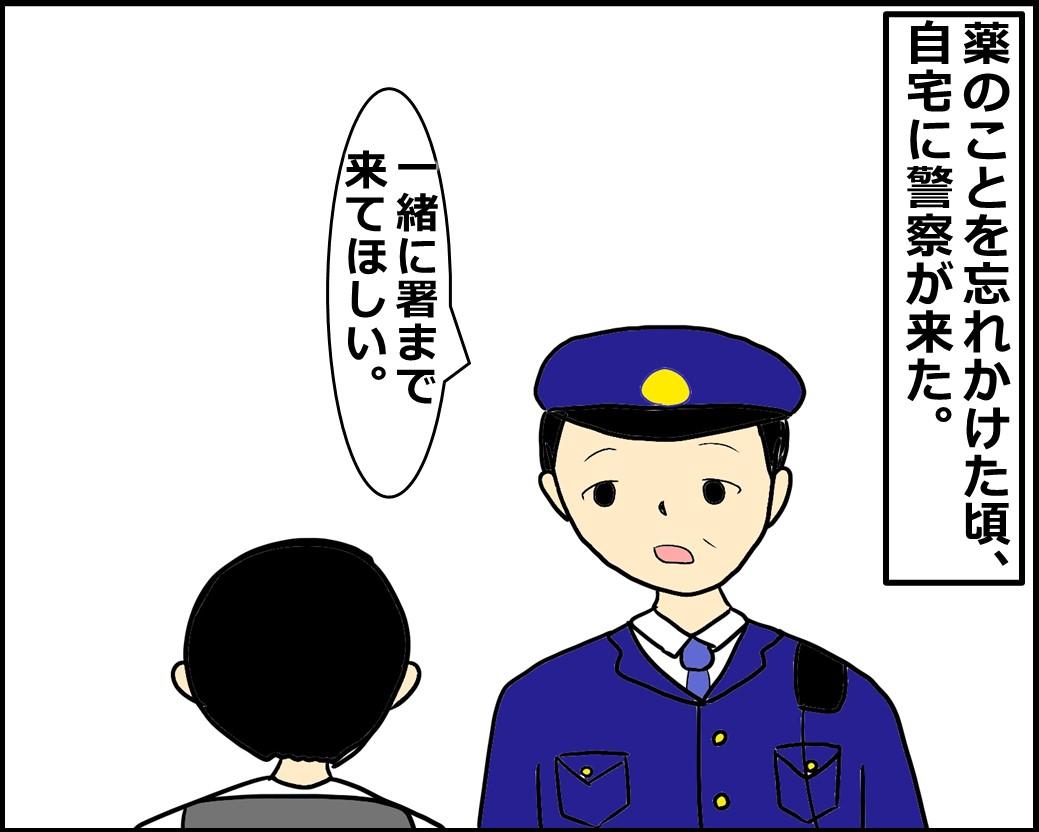 f:id:Megumi_Shida:20210119122222j:plain
