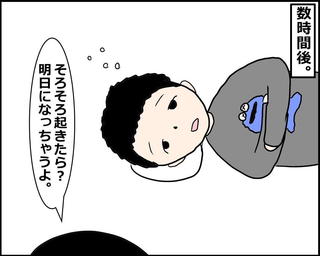 f:id:Megumi_Shida:20210128162909j:plain