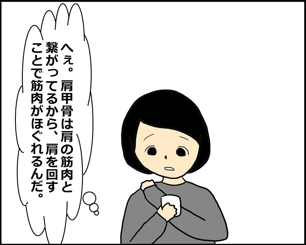 f:id:Megumi_Shida:20210204151133j:plain