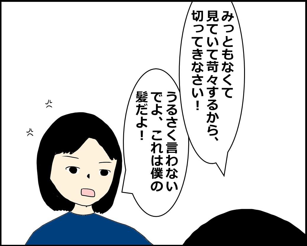 f:id:Megumi_Shida:20210525111842j:plain