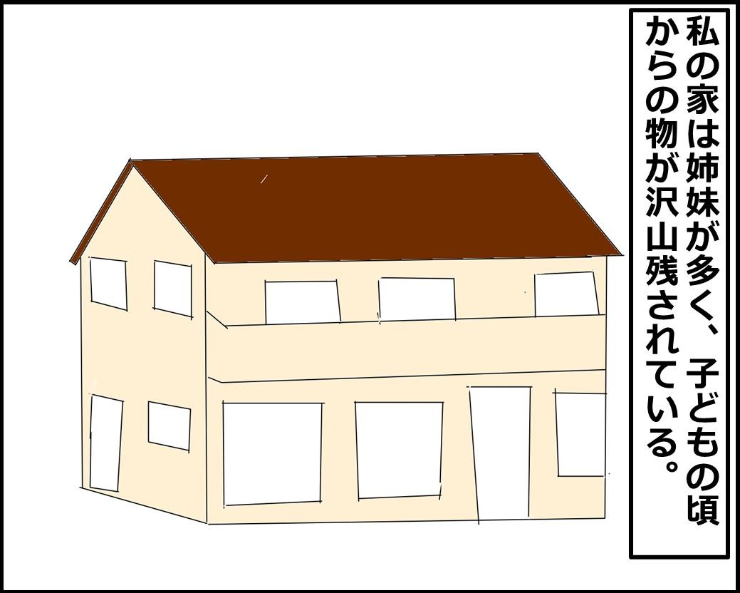 f:id:Megumi_Shida:20210530103830j:plain