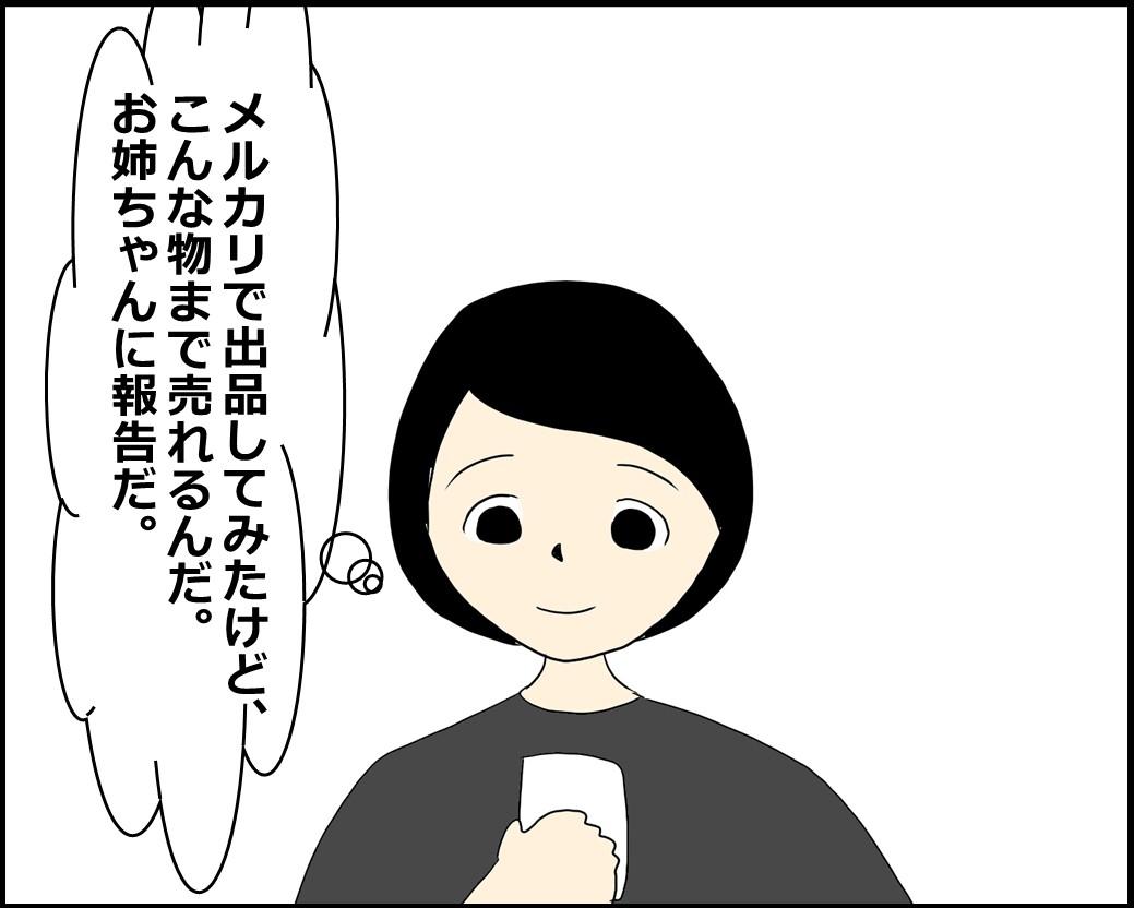 f:id:Megumi_Shida:20210530104040j:plain