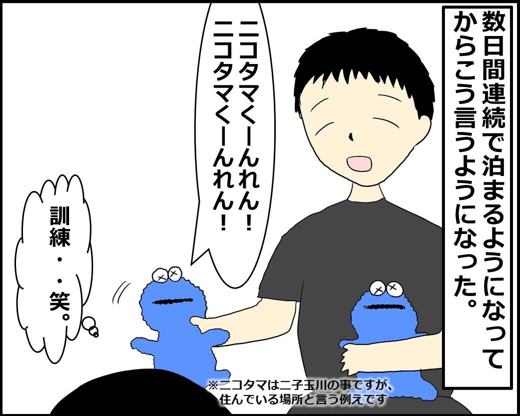 f:id:Megumi_Shida:20210602135808j:plain