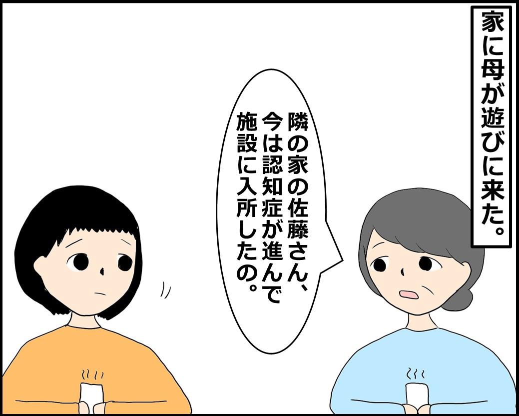 f:id:Megumi_Shida:20210607131505j:plain