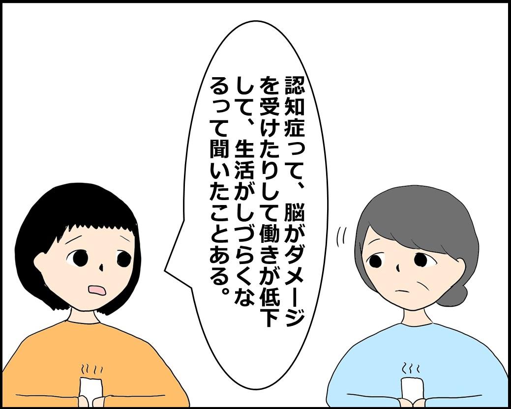 f:id:Megumi_Shida:20210607131532j:plain