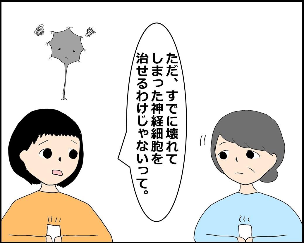 f:id:Megumi_Shida:20210609181423j:plain