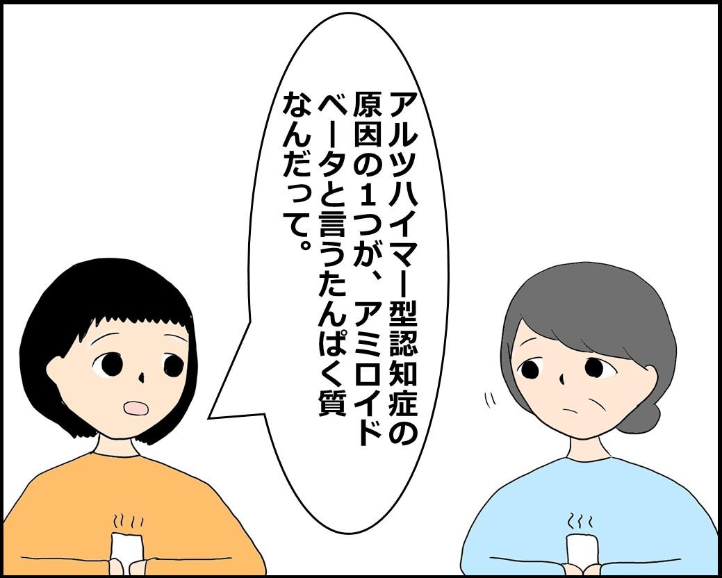 f:id:Megumi_Shida:20210612125559j:plain