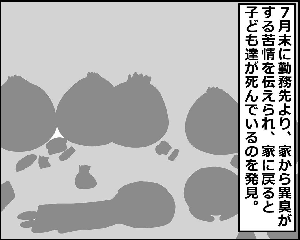f:id:Megumi_Shida:20210622135512j:plain
