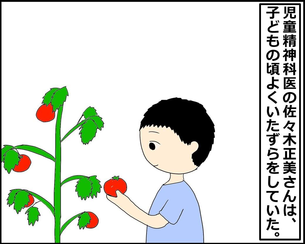 f:id:Megumi_Shida:20210821121929j:plain