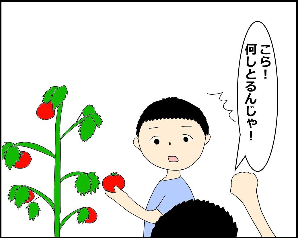 f:id:Megumi_Shida:20210821121935j:plain