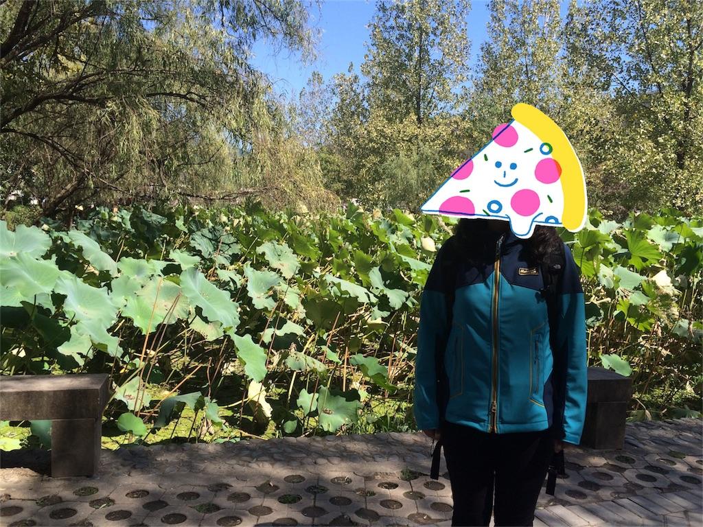 f:id:Meishu0202:20161205124413j:image