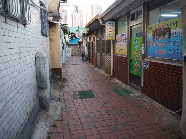 f:id:Meishu0202:20190227123947j:image
