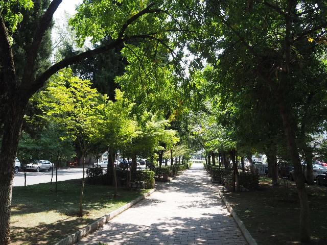 f:id:Meishu0202:20191130232941j:image